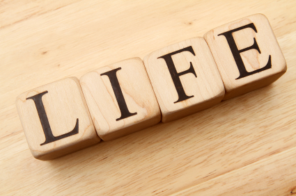 What is Life? Certificate or Acquiring Knowledge?